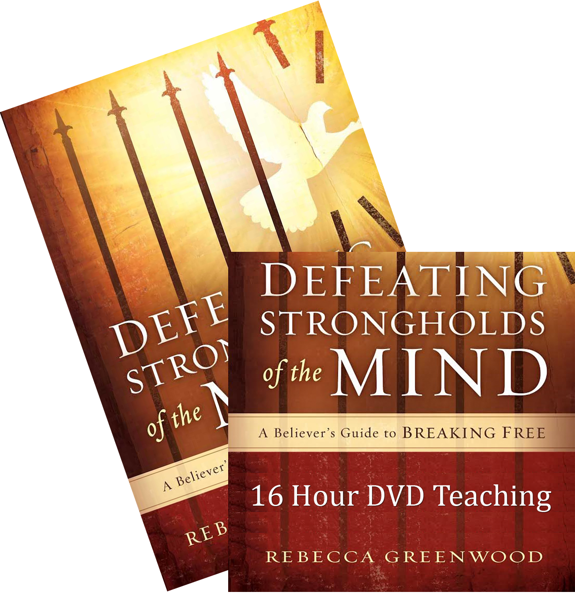 Defeating Strongholds of the Mind DVD/Book Set - Christian